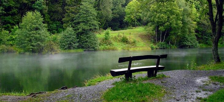 Bildet viser et friluftsområde med vann, skog og benk.