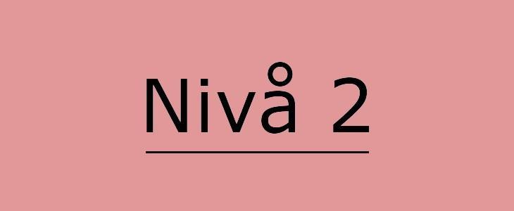 Illustrerende bilde av Nivå 2