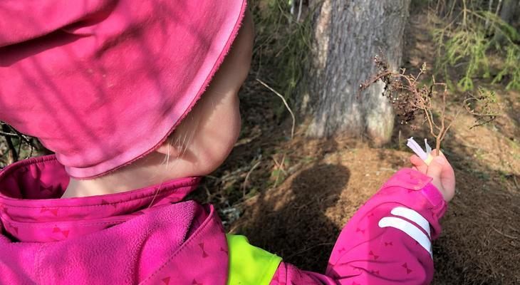 Viser bilde av et barn som undersøker en kvist i naturen