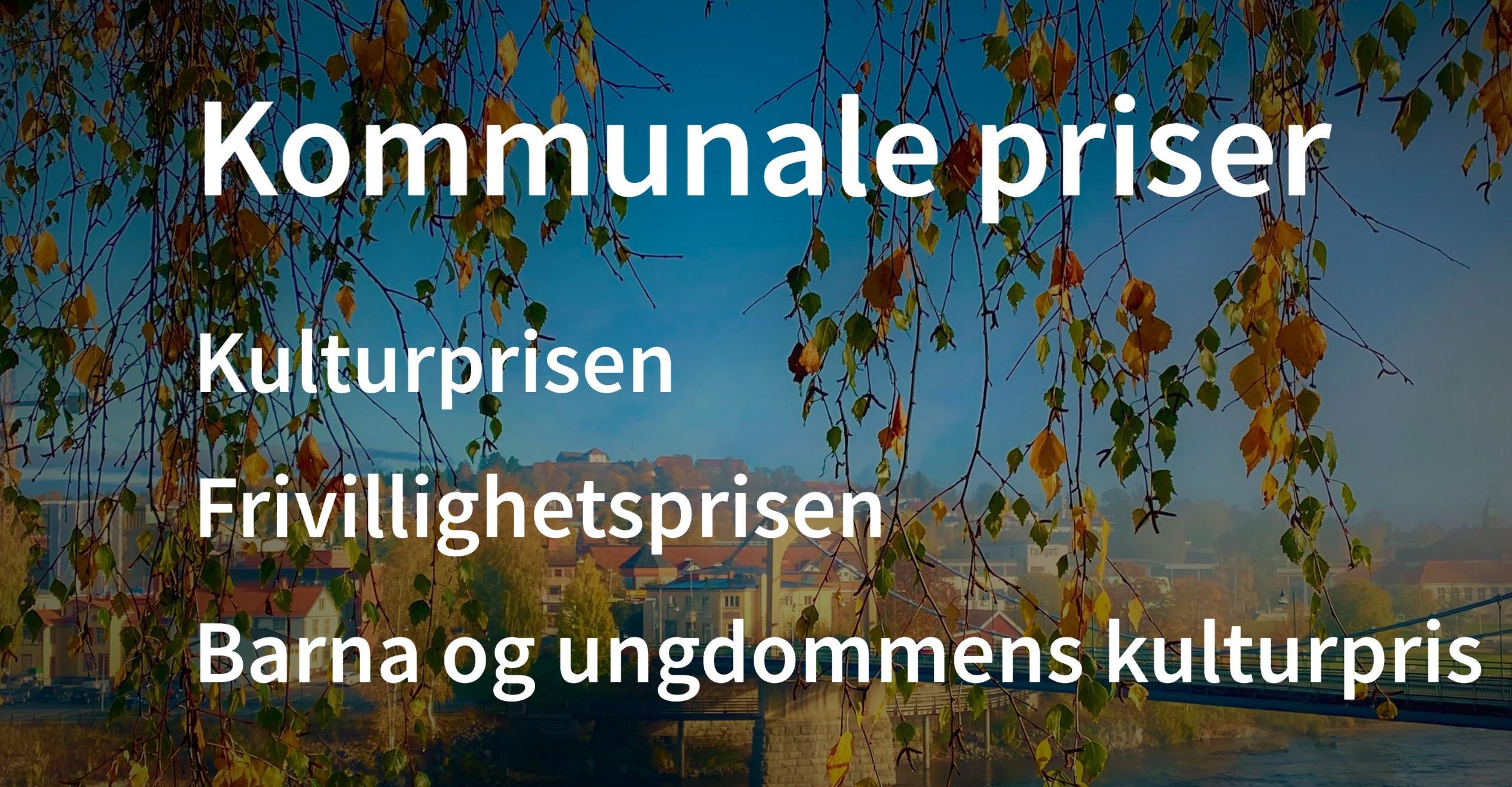 kommunale priser