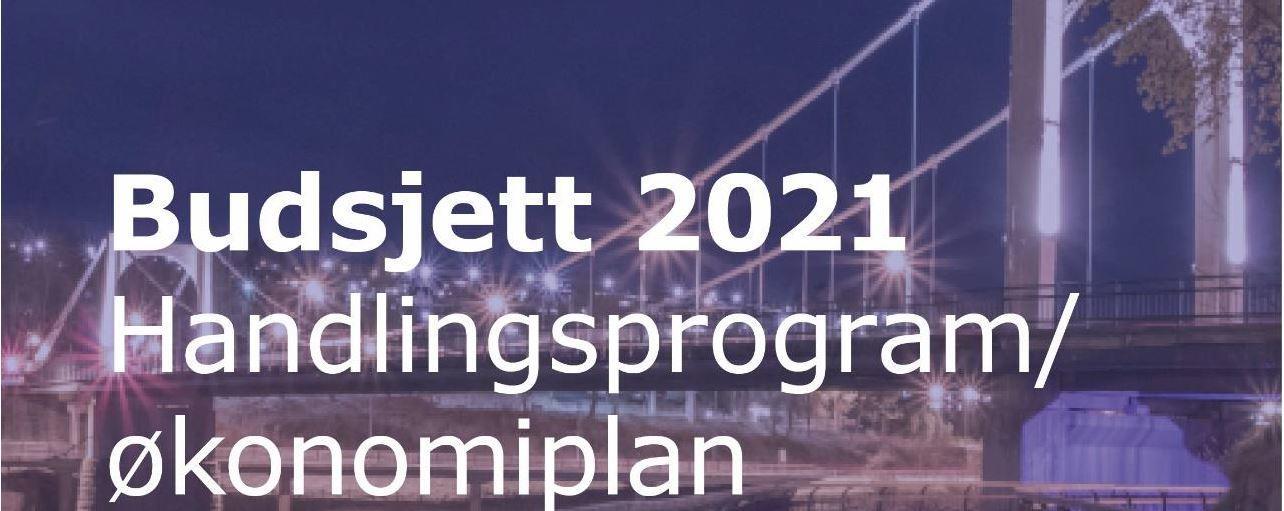 Budsjett 2020